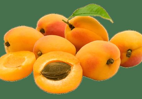 Illustration pour l'aliment diététique l'abricot