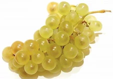 Illustration pour l'aliment diététique le raisin